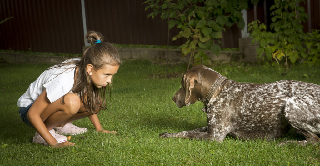 Girl playing with a dog.