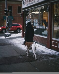 Dog Attack Injury Law Firm